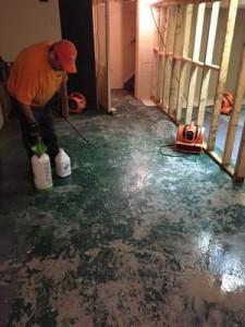 New Floor Restoration