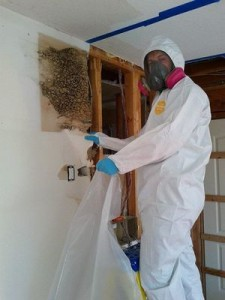 Water damage imlaystown Wall Removal
